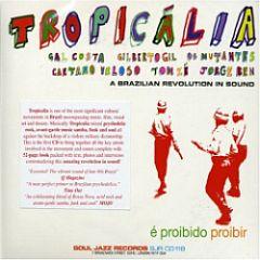 tropicalia-brasilian-revolution.jpg