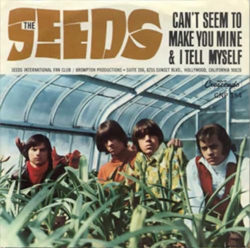 seeds-sky