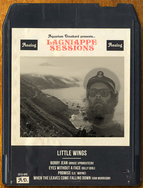 little_Wings_Aquarium_drunkard