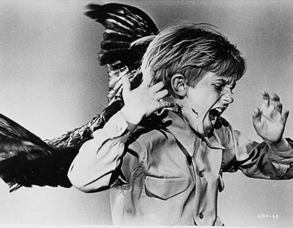 hitchcocks-birds-child-edit