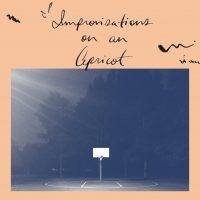 Aqueduct Ensemble – Improvisations On An Apricot album cover
