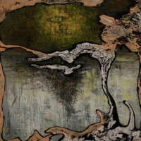 Julian Lynch – Terra album cover