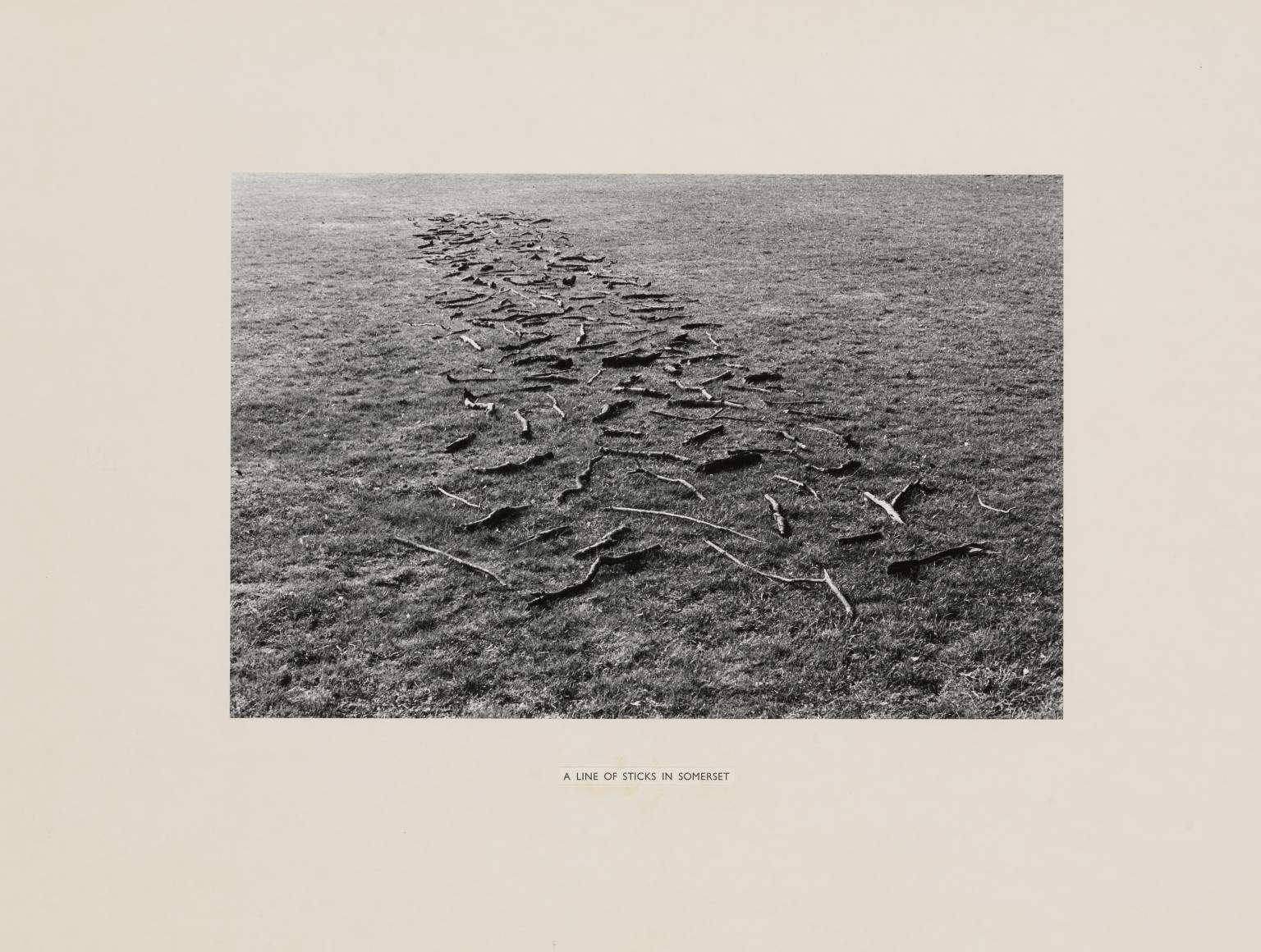 A Line of Sticks in Somerset 1974 Richard Long