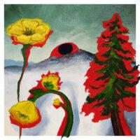 Woods – Strange to Explain album cover