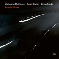 Wolfgang Muthspiel – Angular Blues album cover