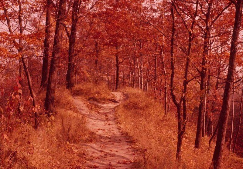 autumn equinox 2021 - photo #13